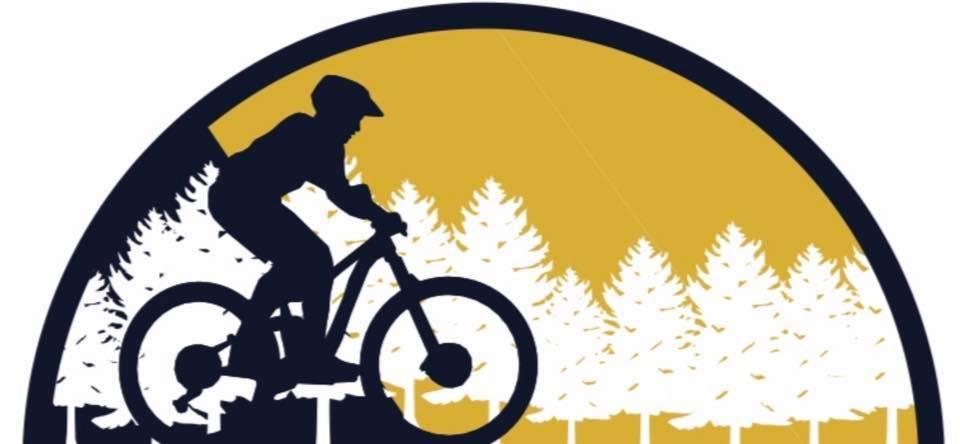 Engineering Dept. Shares Bike Park Update, Seeks Input